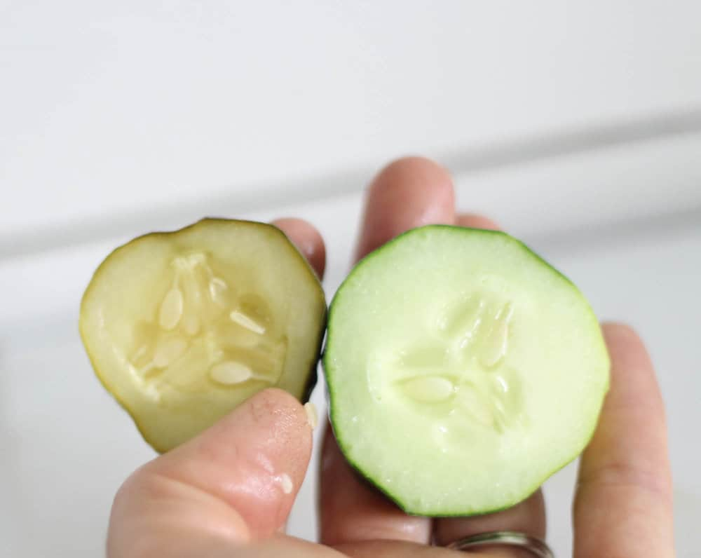 hand holding homemade fermented pickle and a freshly sliced cucumber