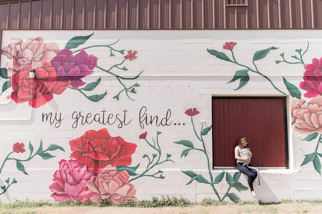 Waco Texas My Greatest Find Mural Magnolia Tour