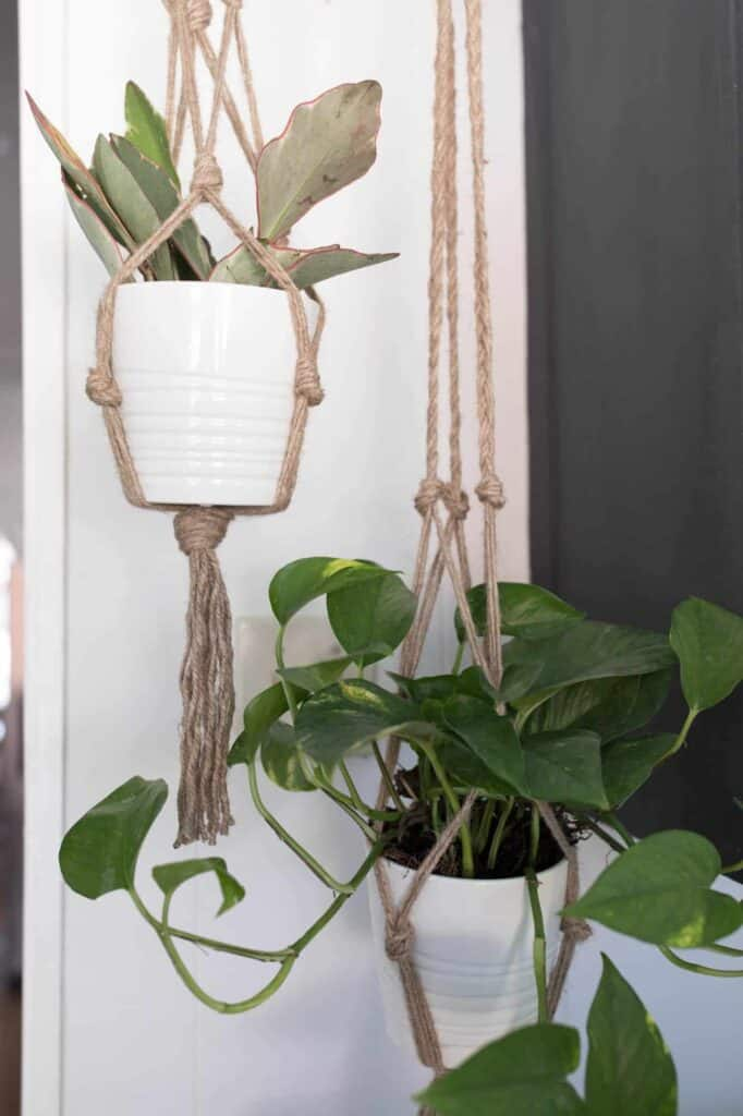 Two Macrame Plant Hanger DIY hanging