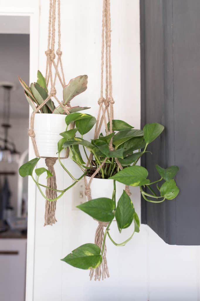 Jute Plant Hanger DIY Video Tutorial
