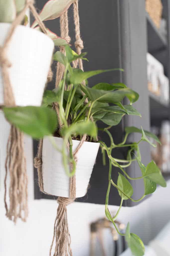 Laundry Room Decor Farmhouse Style DIY Plant Hanger