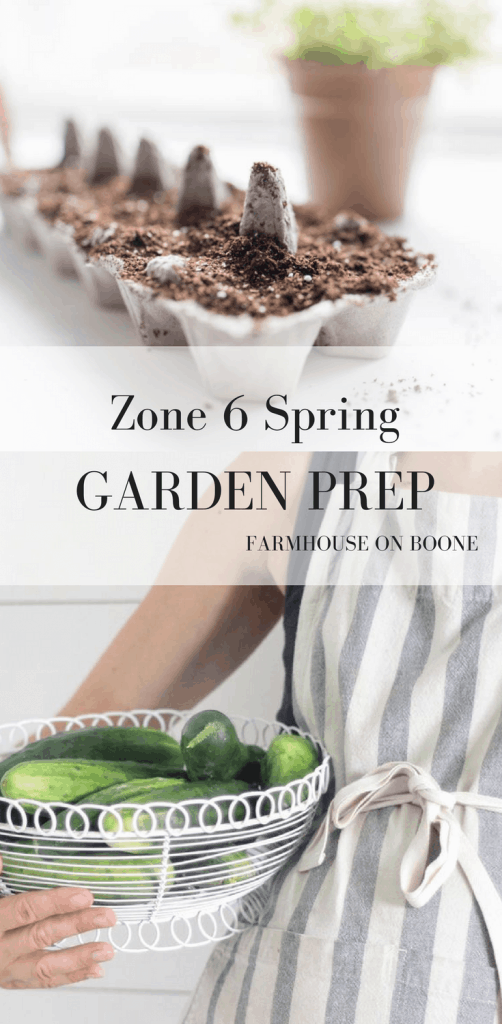 Zone 6 spring garden preparation starting seeds indoors