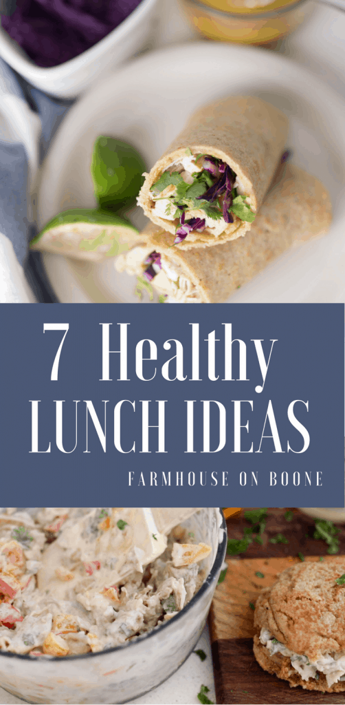 Seven Healthy Meal Ideas for Family
